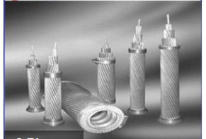 ACSS / TW Aluminium Alloy Conductors Excellent Self Damping Properties ISO9001 Certificated